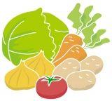 色々な栄養素を含む野菜